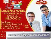 Diseño web profesional y Hosting economico a su medida, Necesitas una pagina web ?