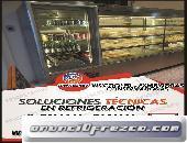 SERVICIO TECNICO A DOMICILIO –7256381– REPARACION Y MANTENIMIENTO DE VISICOOLER-CONGELADORAS-ZARATE