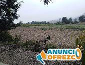 Terreno en Pachacamac